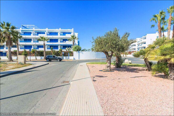 kvartira-playa-flamenca-ispaniya-more-29's Foto