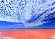 Salt Pink Lake in Torrevieja