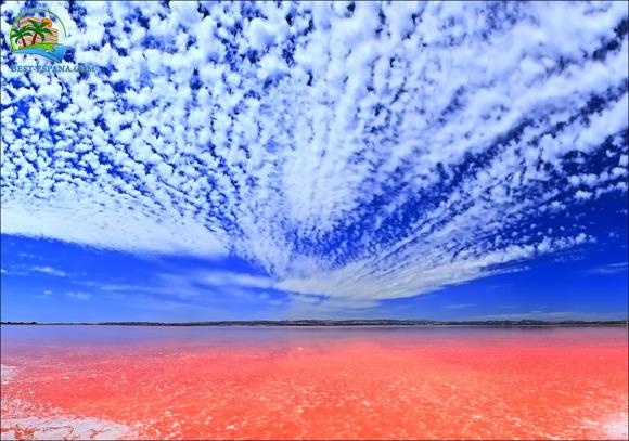 pink salt lake torrevieja