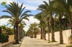 España Cabo Roig propiedades playas 09